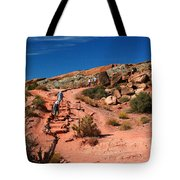 Path To Double O Arch Arches National Park Tote Bag