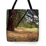 Path To Enlightenment 1 Tote Bag