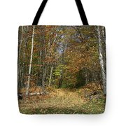 Path To Joiner Brook Tote Bag