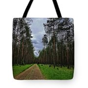 Path To Nowhere Tote Bag