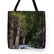 Path To Paradise Tote Bag