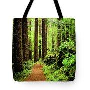 Path To Peace Tote Bag