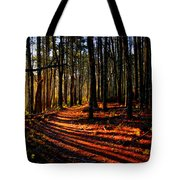 Path To Serenity - Nickerson State Park Tote Bag