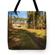 Path To St Cuthbert's Cave Tote Bag