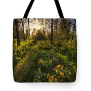 Path To The Golden Light Tote Bag