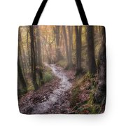 Path Trough The Woods Tote Bag