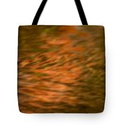 Pathway Of Light Tote Bag