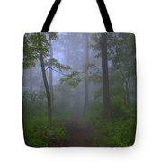 Pathway Through The Fog Tote Bag