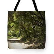 Pathway To Somewhere Tote Bag