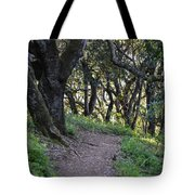 Pathways Tote Bag