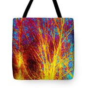Pathways Of Color Tote Bag