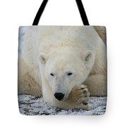 Polar Bear Patience Tote Bag