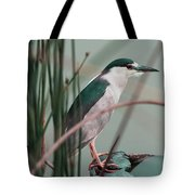 Patiently Waiting Tote Bag