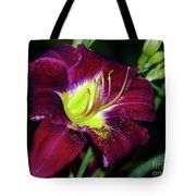 Patricia Neal Daylily Tote Bag