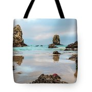 Patrick And Friends Visit Cannon Beach Tote Bag