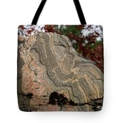 Pattern In A Gneiss Rock Tote Bag