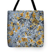 Pattern In Lichen  Tote Bag