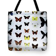 Pattern Made Out Of Many Different Butterfly Species Tote Bag