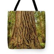 Patterned Redwood Tote Bag