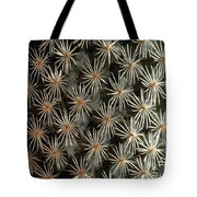 Patterns In Light And Dark Tote Bag