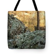 Pause For Dinner Tote Bag