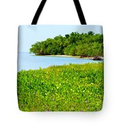 Pavilion Point Tote Bag