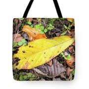 Paw Paw Leaf Fall Colors Tote Bag