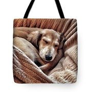 Peace At Last #saluki Tote Bag