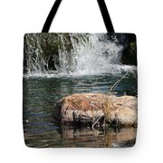Peace In The Park Tote Bag