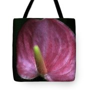Peace-lilly-pink Tote Bag