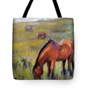Peace On The Mountain Tote Bag