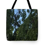 Peaceful And Relaxed  Tote Bag