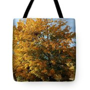 Peaceful Country Road Tote Bag