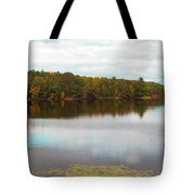 Peaceful Fall Day Tote Bag