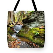 Peaceful Flow Tote Bag
