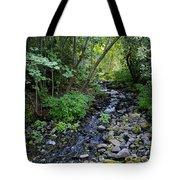 Peaceful Flowing Creek Tote Bag