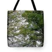 Peaceful Grandeur Tote Bag