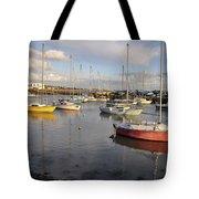 Peaceful Mooring Tote Bag