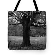 Peaceful Park Tote Bag