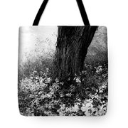 Peaceful Tranquility Tote Bag