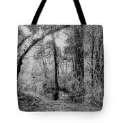 Peaceful Trees Tote Bag