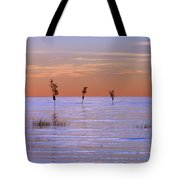 Peaceful View Tote Bag