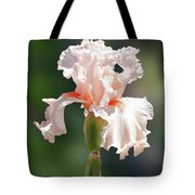 Peach Bearded Iris 2 Tote Bag