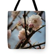Peach Blossoms In Spring Tote Bag