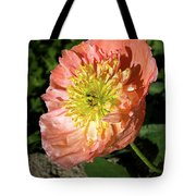 Peach Colored Poppy Tote Bag