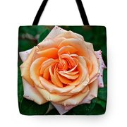 Peach-colored Rose At Pilgrim Place In Claremont-california   Tote Bag