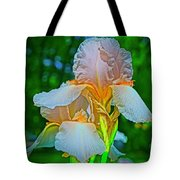 Peach Curtsey Tote Bag
