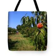 Peach Grove Tote Bag