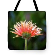Peach Perfection Tote Bag