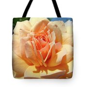 Peach Rose Art Prints Roses Flowers Giclee Prints Baslee Troutman Tote Bag